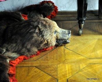 Медведь, напомниающий об охоте, на которой чуть не погиб Лев Николаевич, Усадьба Л.Н. Толстого в Хамовниках