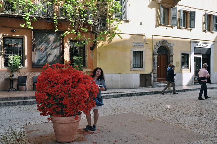 Улица за воротами Верона