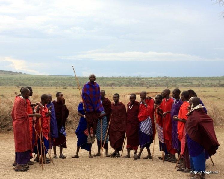 Танец воинов племени масаи