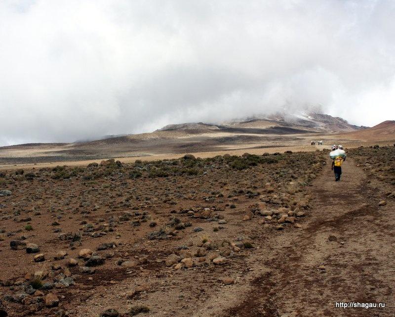 Пустыня на Килиманджаро