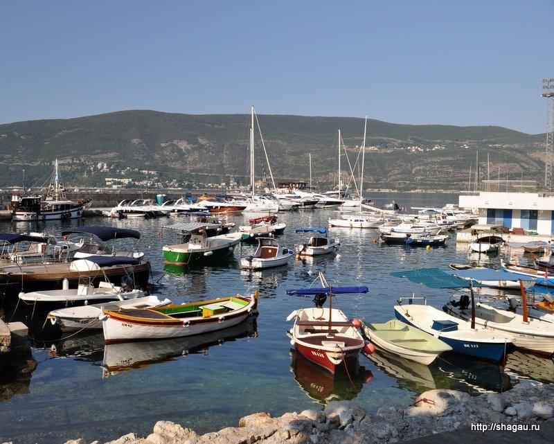 Много лодок в порту Герцег-Нови