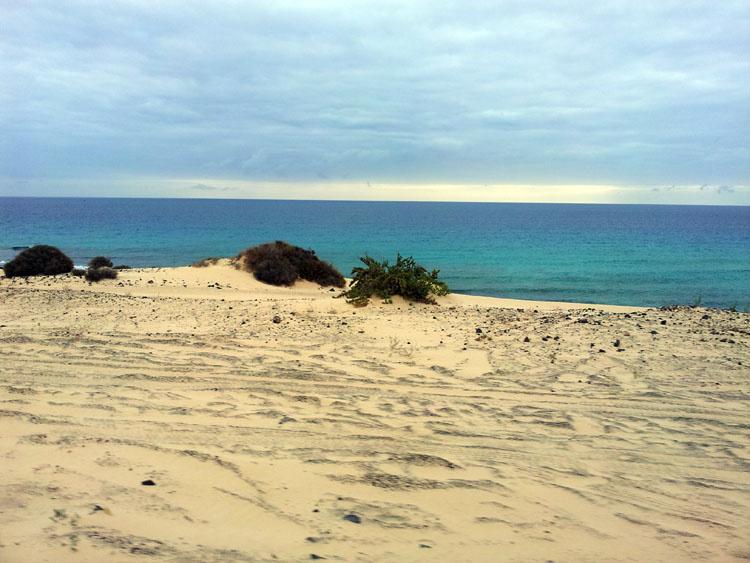 Скоро начнутся супер дюны Фуэртевентуры