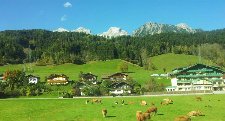Альпийские поля