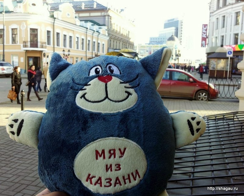 Мяу из Казани