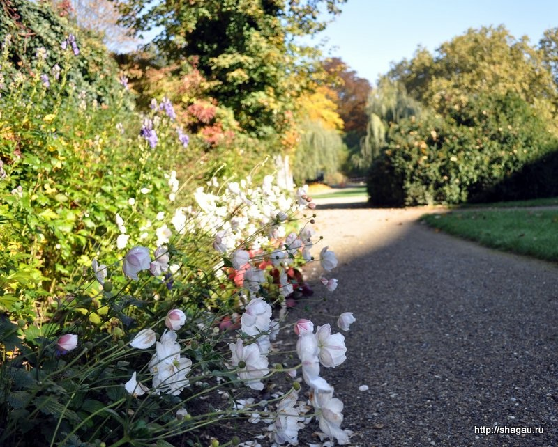 В саду Эггенберг