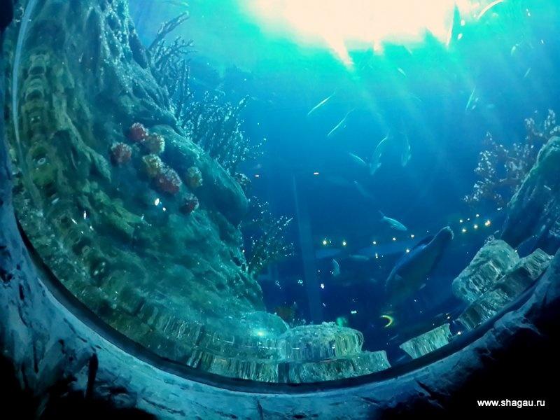 Стоим под толщей воды