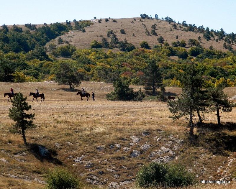 Прогулки на лошадях на ай Петри