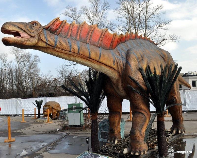 Амаргозавр. Динозавры на ВВЦ