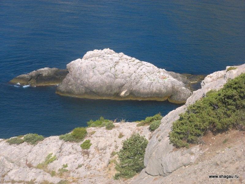 Остров черепаха в Крыму