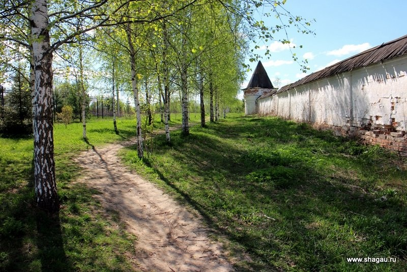 Аллея вокруг Лужецкого монастыря