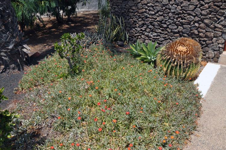 Villa Casas Del Sol сад