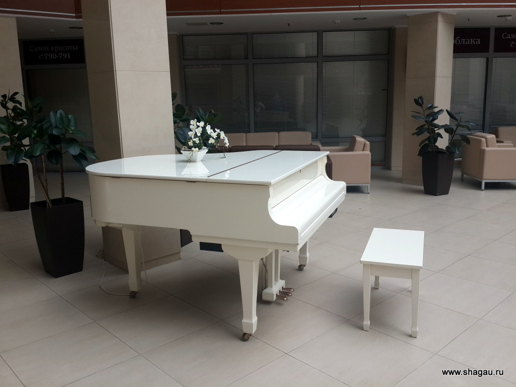 Белый рояль в Онега Палас