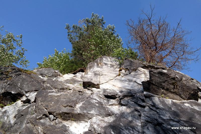 Суровый карельский пейзаж