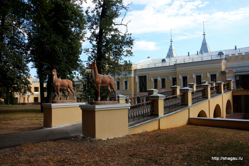 Олени в Кирицах