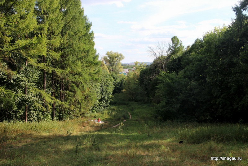 Вид с холма, на котором расположена усадьба