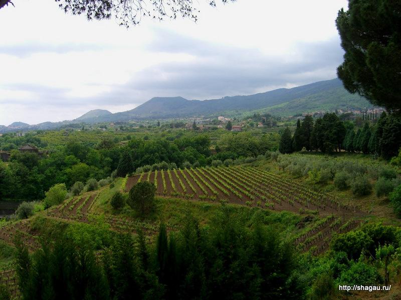Зеленые склоны вулкана Этна