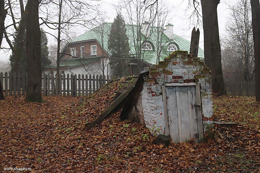 Погреб, засыпанный листвой