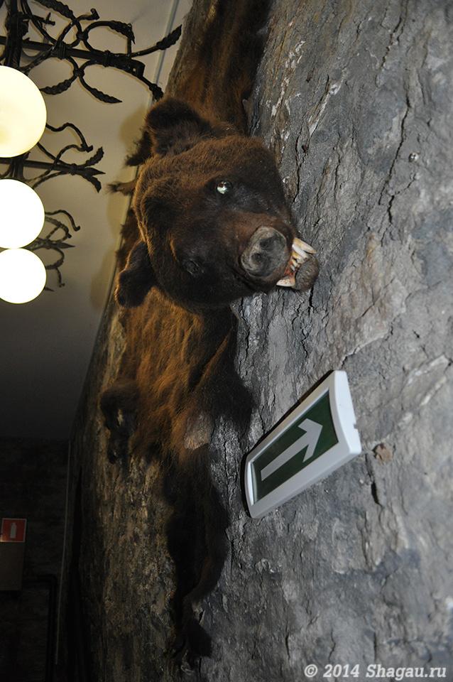 Ресторан Русь. Чучело медведя