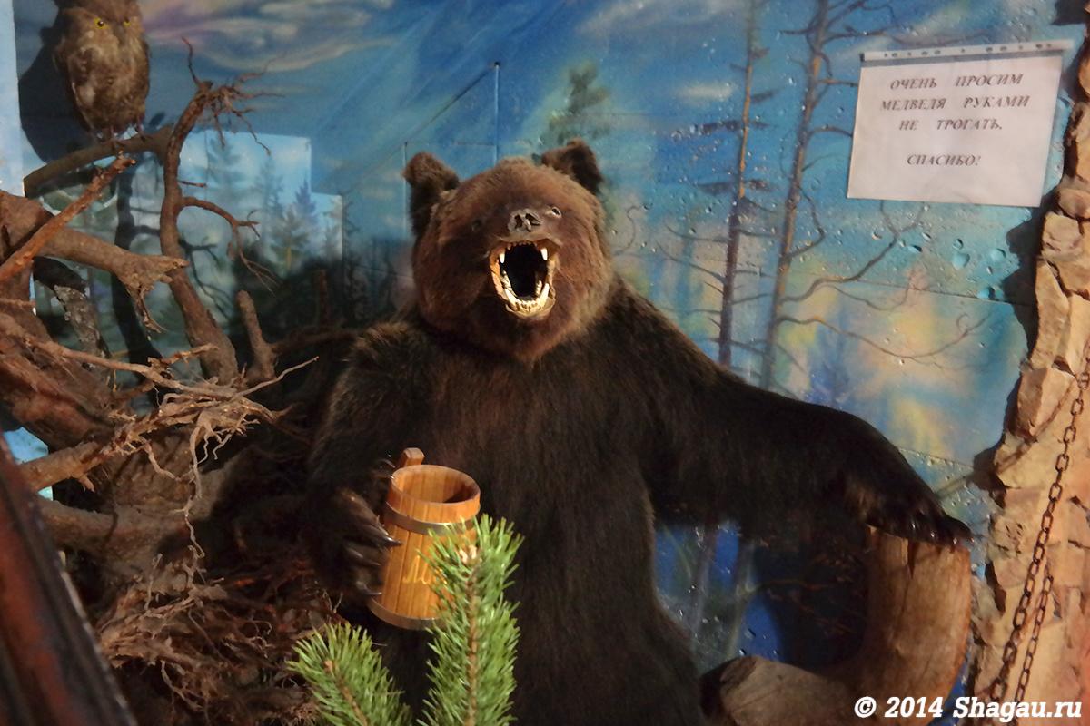 Медведь. Руками не трогать