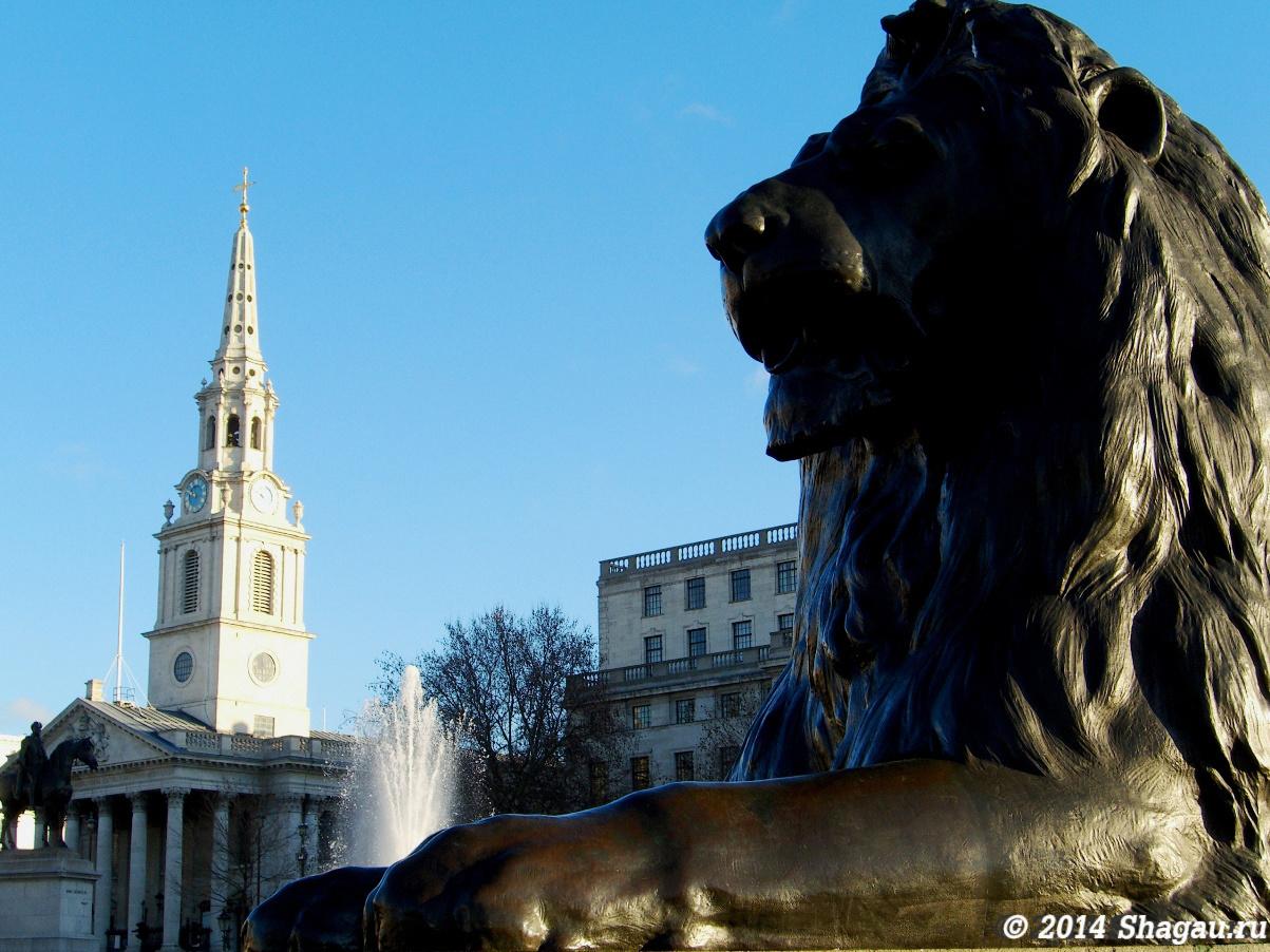 Один из львов у колонны Нельсона и церковь Сент-Мартин
