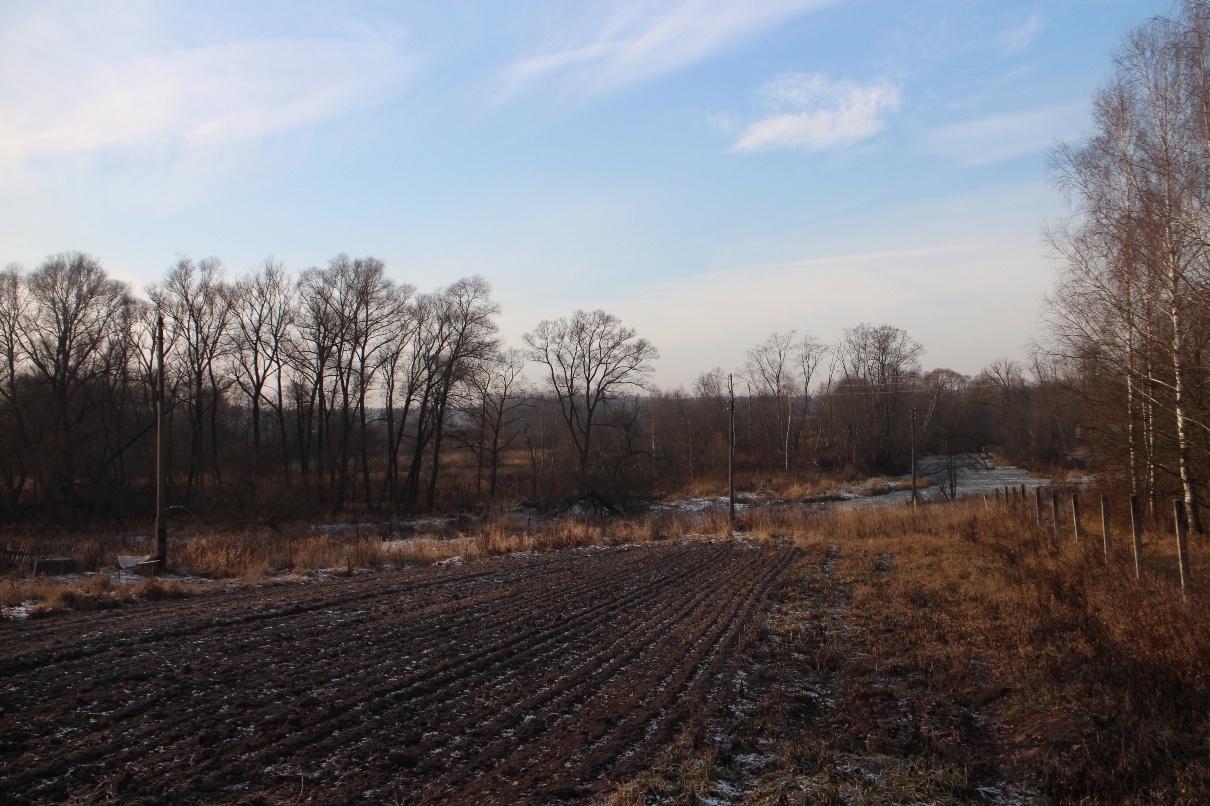 Остатки парка Любаново