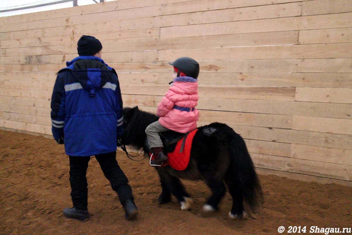 Катание на мини-лошадке