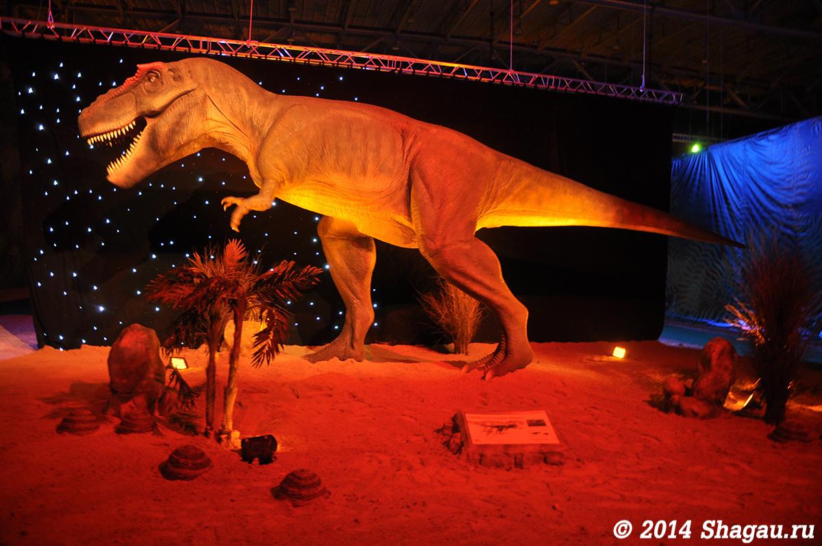 Тирранозавр Рекс
