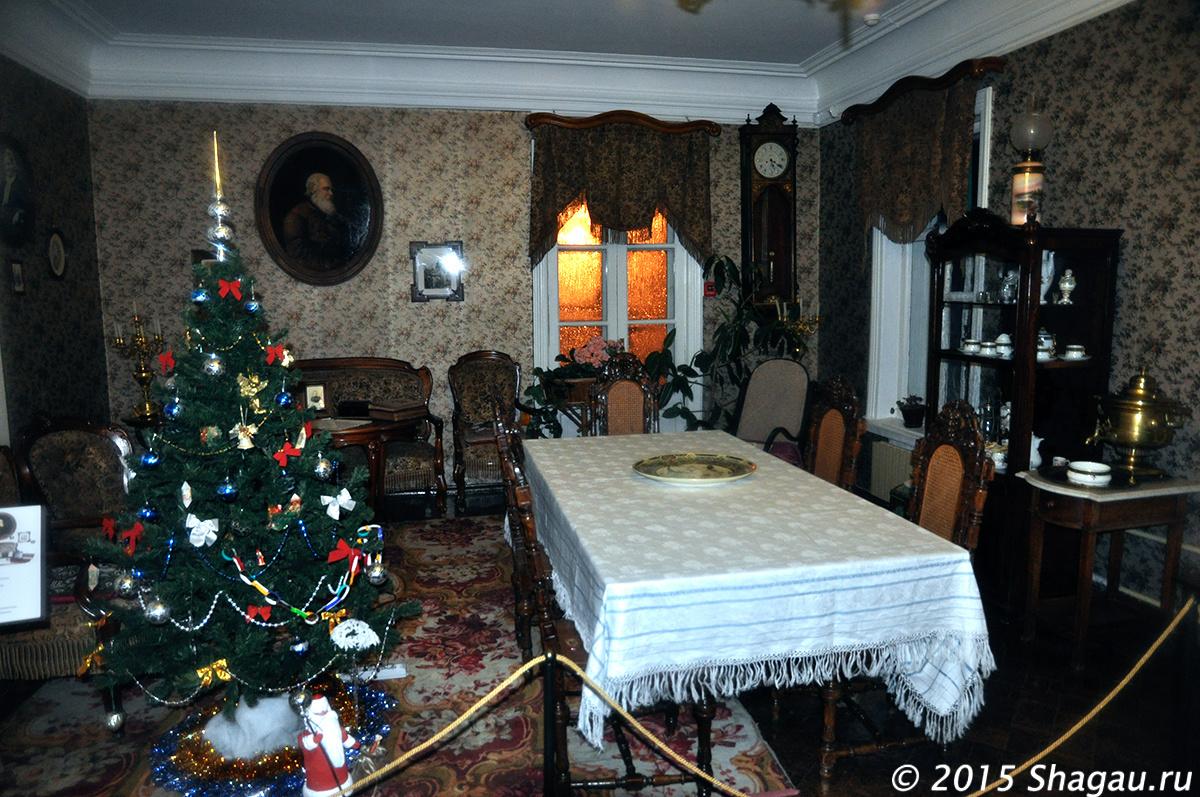 В доме Столетовых