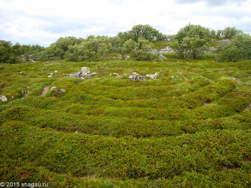 Заячий остров. Каменные лабиринты