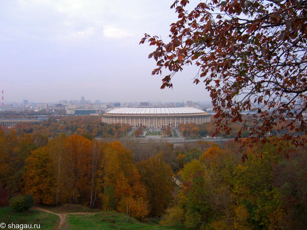 Вид со смотровой площадки Воробьевых гор