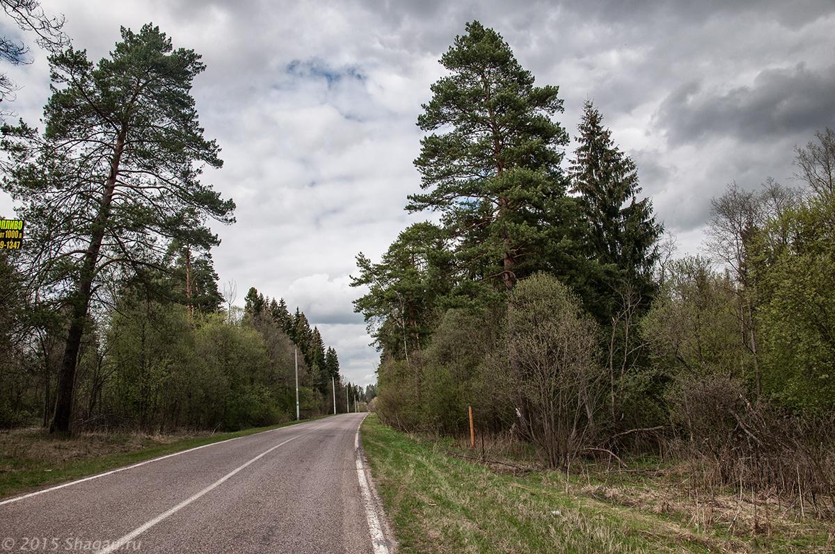 Дорога в Дюдьково
