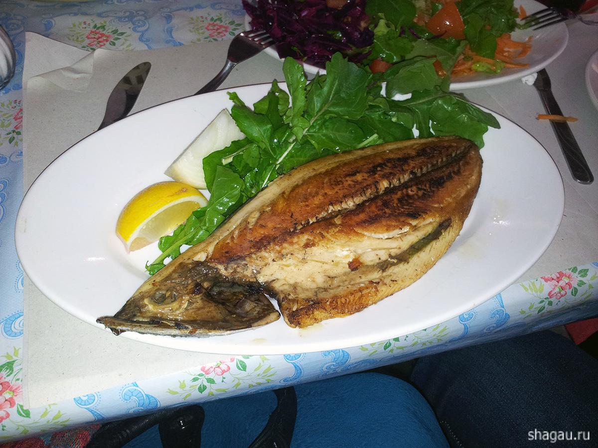 рыба в Стамбуле