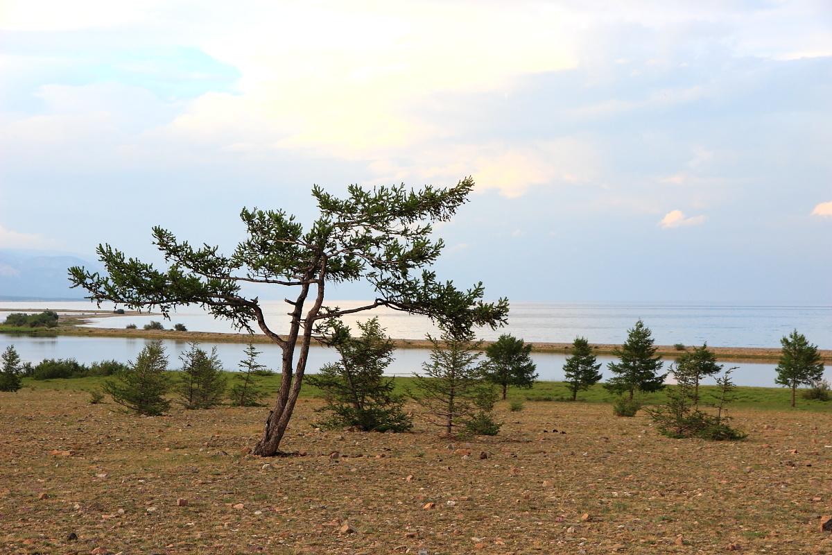 Курминский мыс Байкал