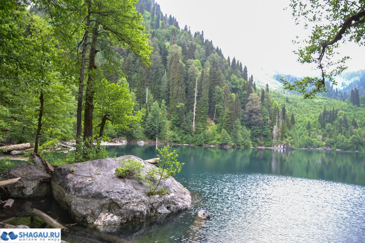 Малая Рица Абхазия