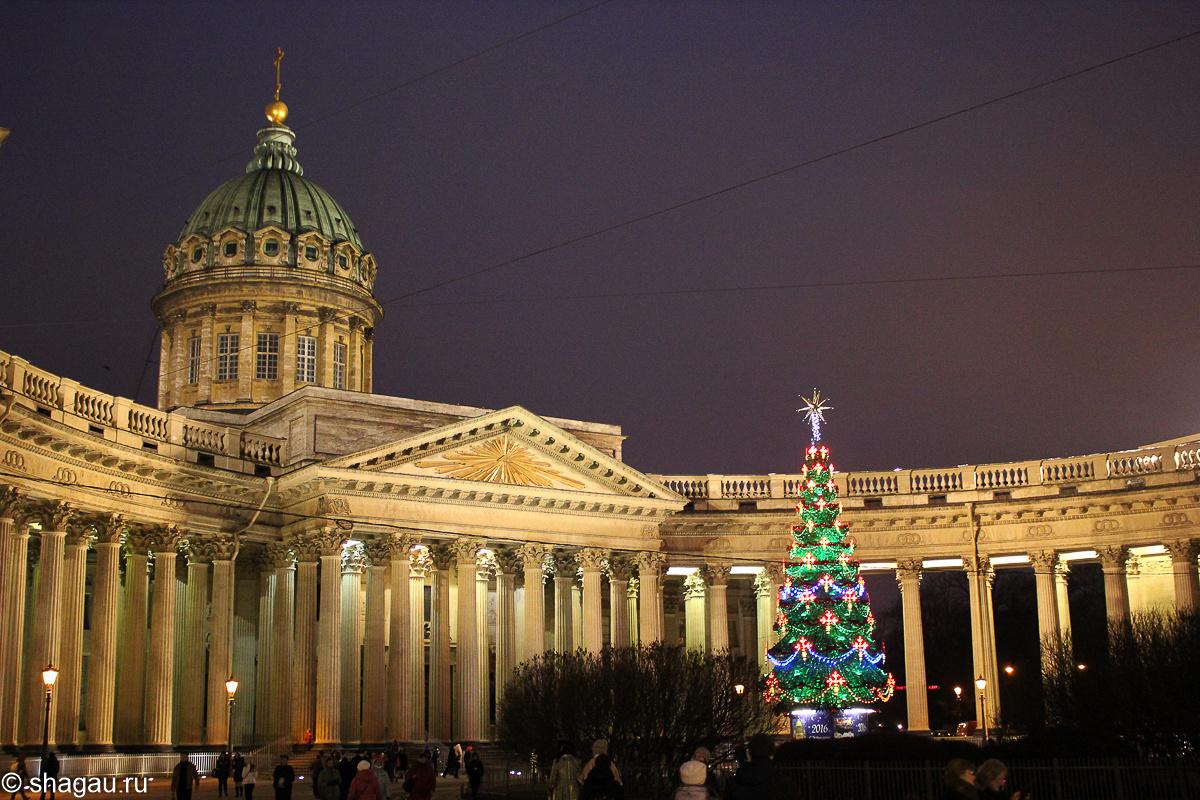 Петербург на новый год картинки поводу рыбы