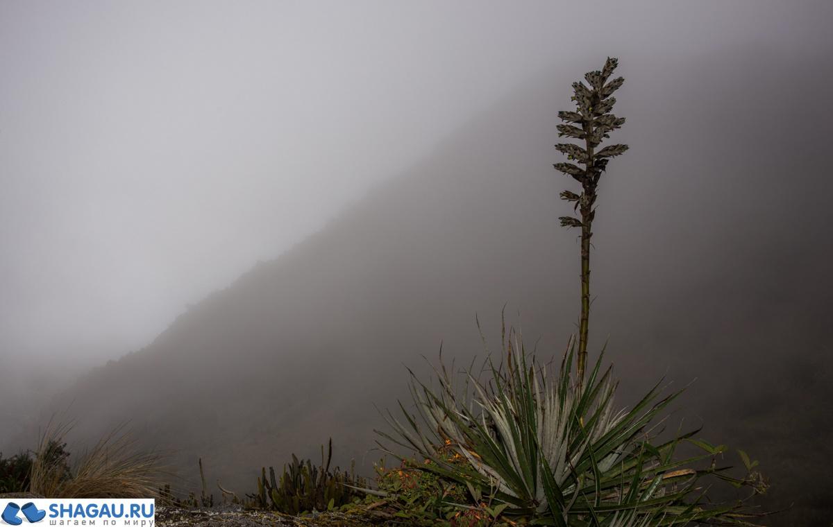 Поход на Мачу Пикчу