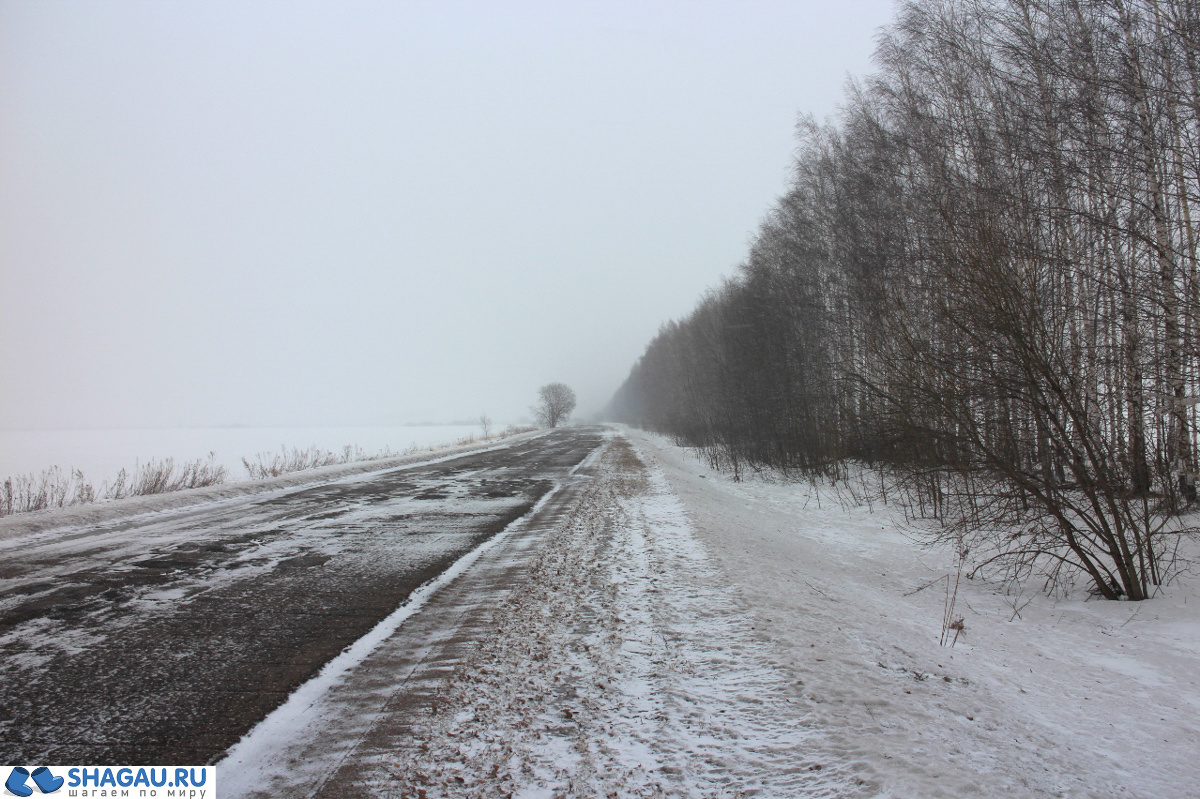 Дорога в Летники