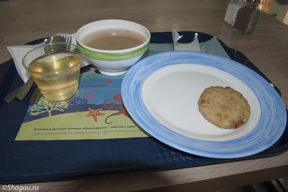 Обед в Москвариуме