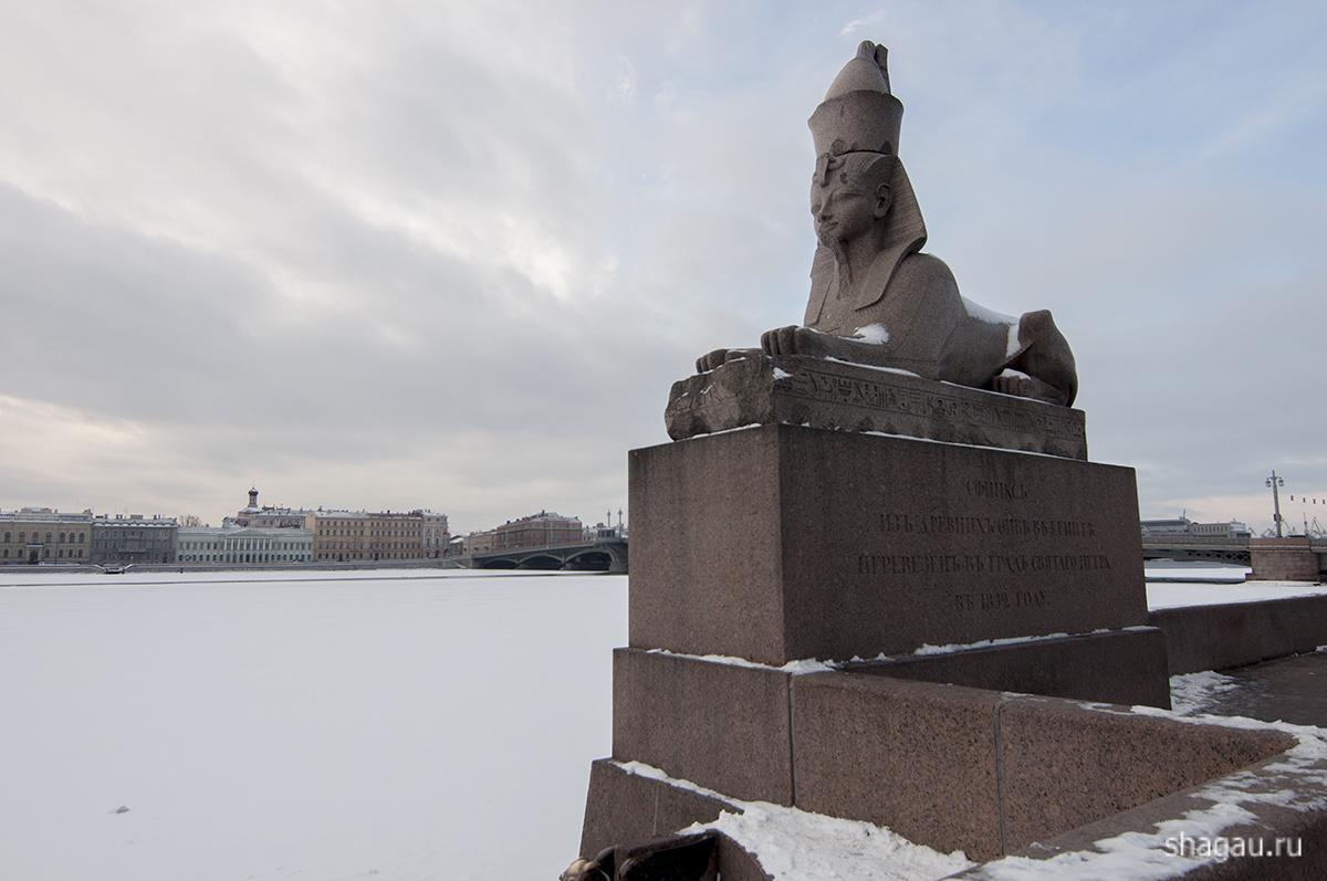 Сфинксы Санкт-Петербург