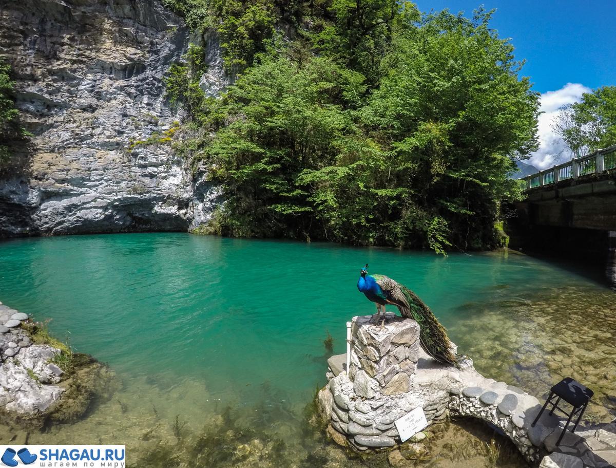 Голубое озеро в Абхазии