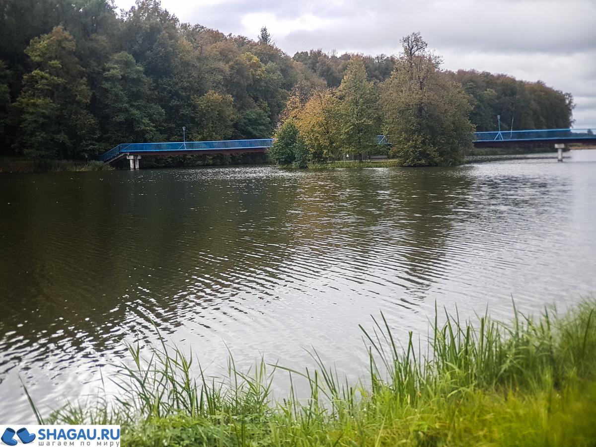 Природа в Вороново