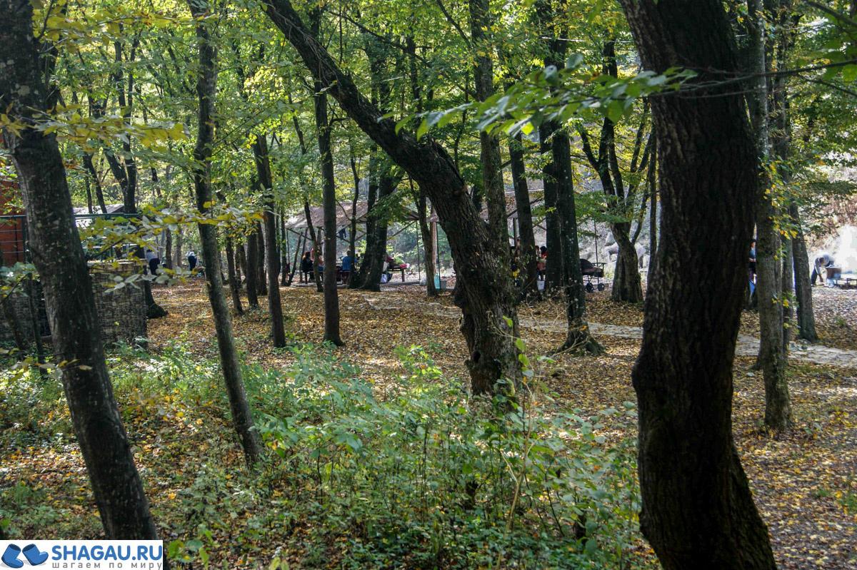 istochnik-svyataya-ruchka-09959