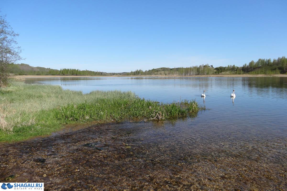 озеро Городищенское. Фото 2015г.