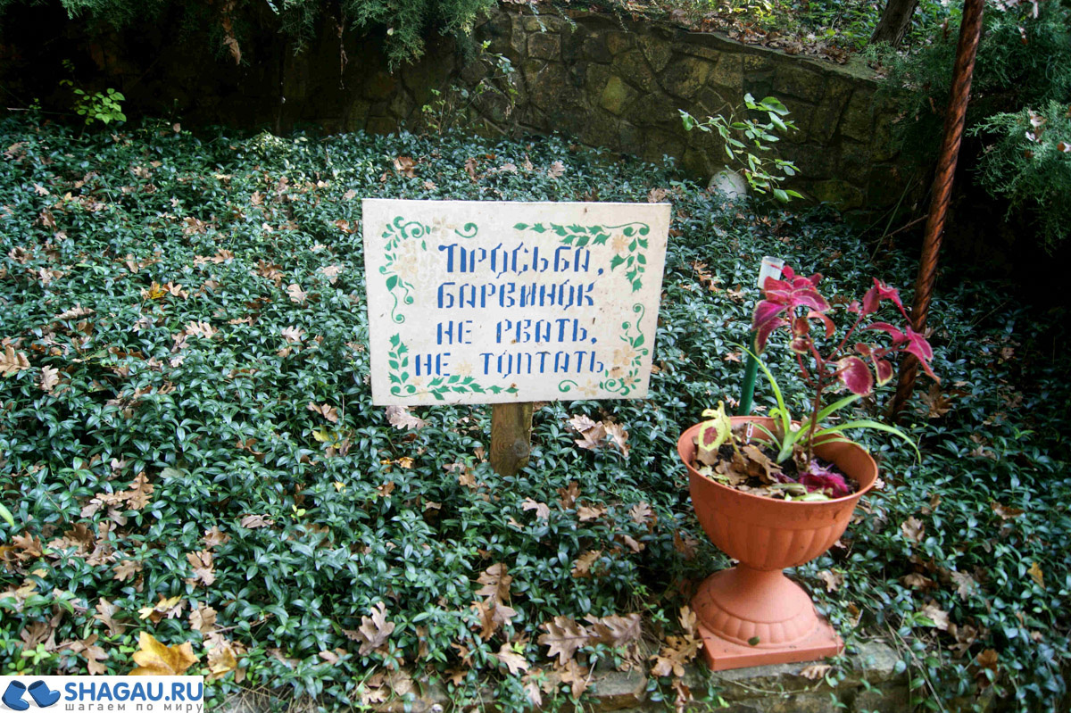 pystin-feodosiya-kavkazskogo-11-of-27