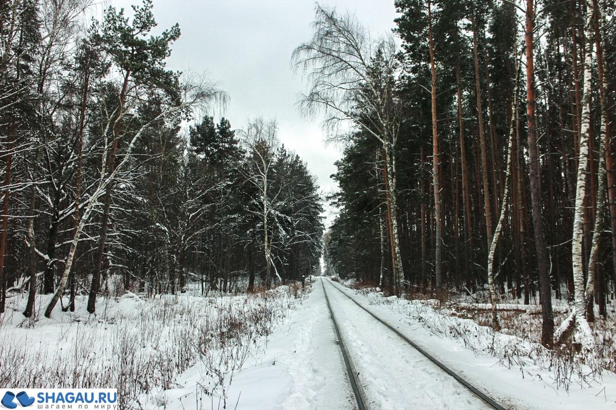 Поздка в усадьбы Лыткарино и Петровское