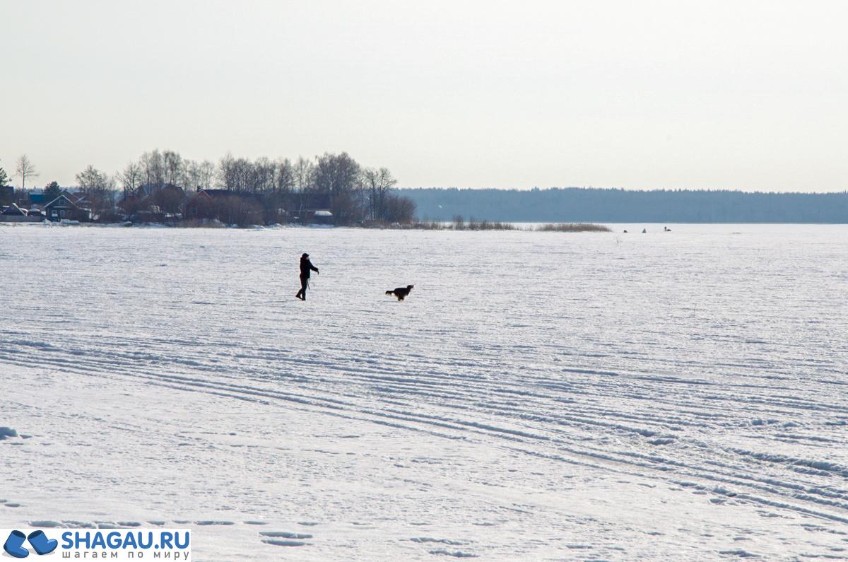 Путеводитель по Вологде и Вологодской области: что нужно знать перед поездкой фотография 9